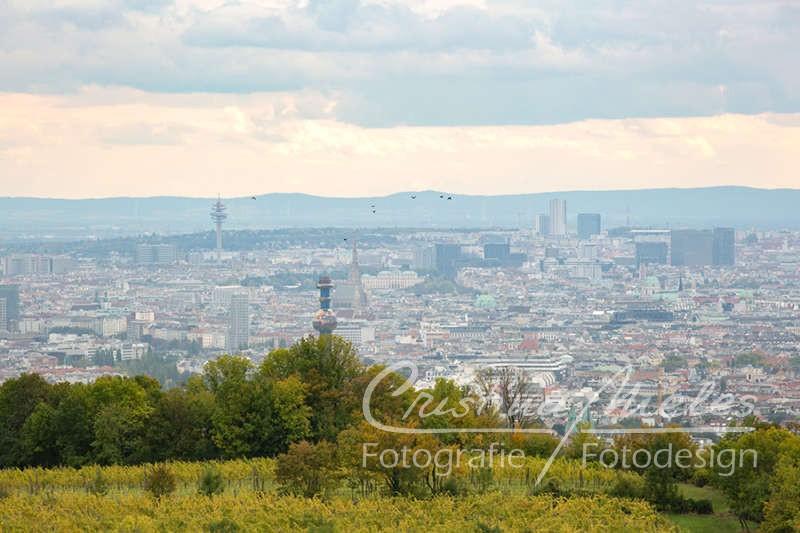 Wien gesehen vom Kahlenberg mit dem Turm der Spittelauer Fernwärme und dem Stephansdom