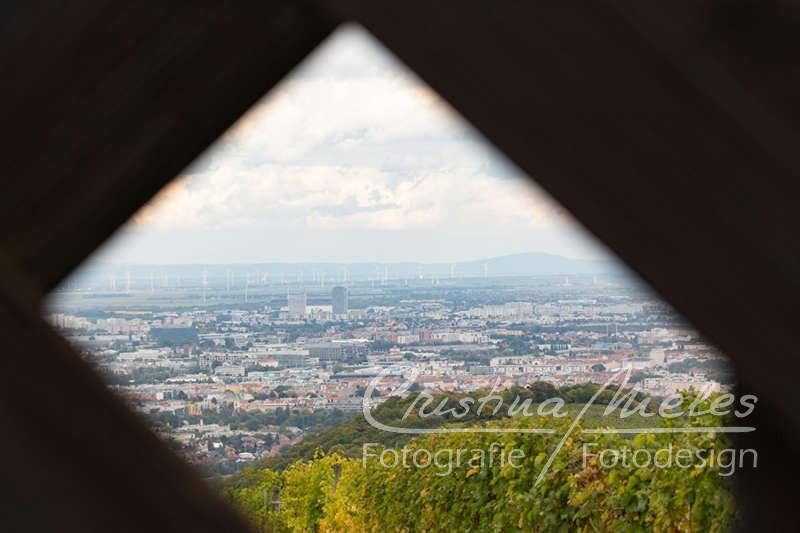 Ein Ausschnitt vom Wiener Blick durch eine Öffnung in einem Holztor