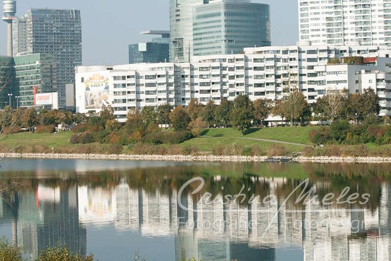 Reflexe von der Wiener Donauplatte in der Neuen Donau